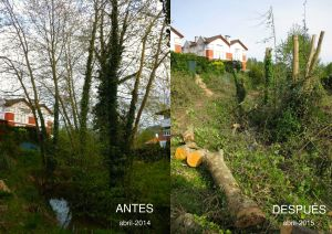 antes-despues-1
