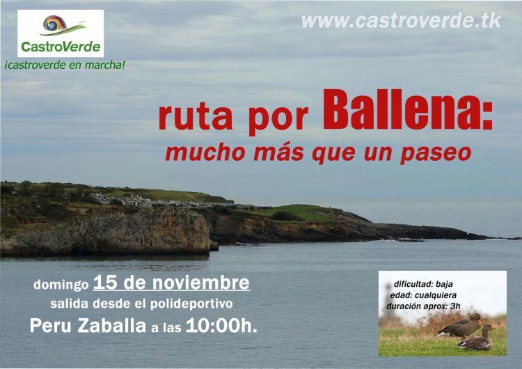 RutaPorBallena_cartel