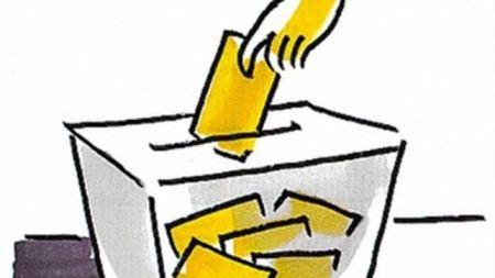 """Resultado de imagen de votar"""""""