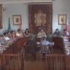 Pleno ordinario del 30 de julio de2019