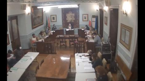 Vídeo del pleno ordinario del 29 de diciembre de2020